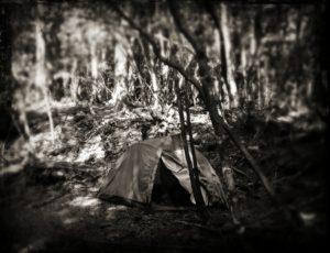 aokigahara_tent_tintype
